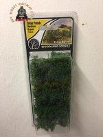 Woodland Scenics FS638 Briar Patch Medium Green